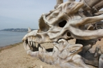 Giant Dragon Skull Found on England Coast